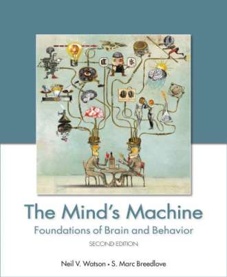 The Mind's Machine (2nd Edition)