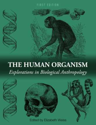 The Human Organism: Explorations in Biological Anthropology